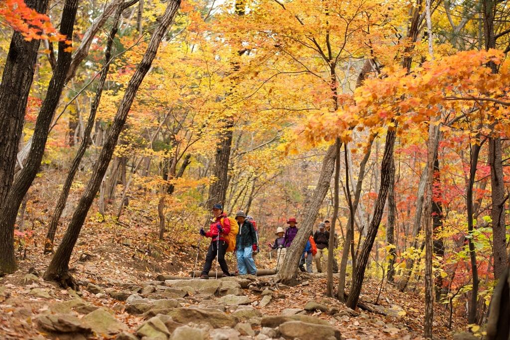 赤や黄に彩られた錦秋の雪岳山を行く
