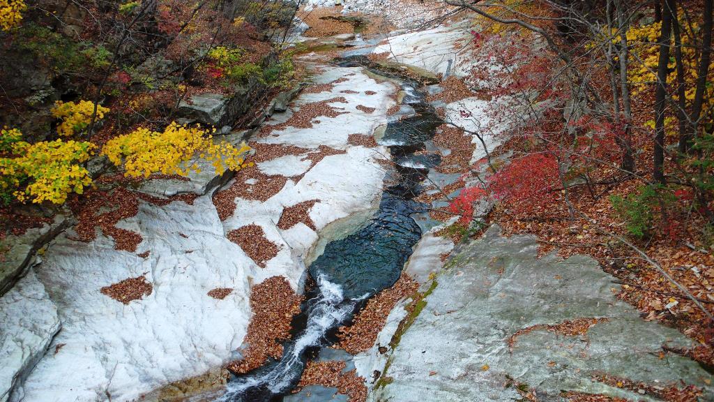 花崗岩の白と紅葉のコントラスト