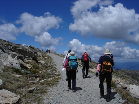 整備されたトレイルを辿りMt.コジオスコの山頂へ