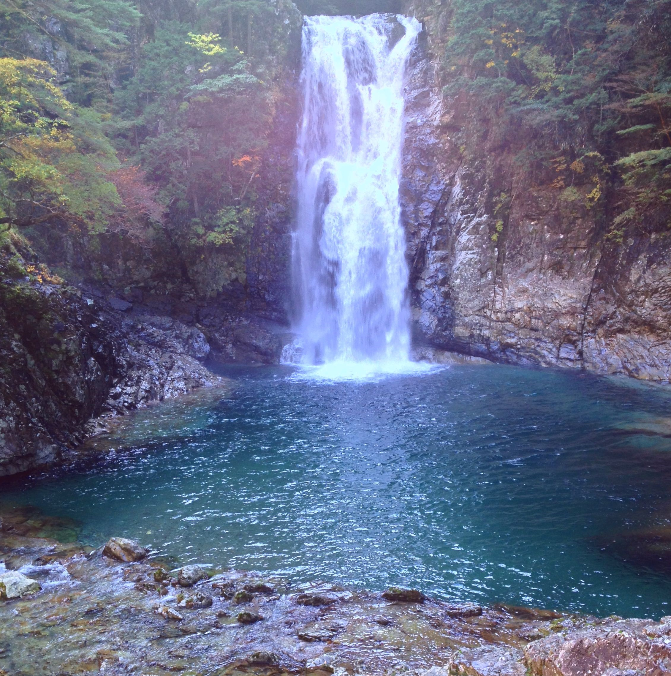 水量豊富な堂倉滝