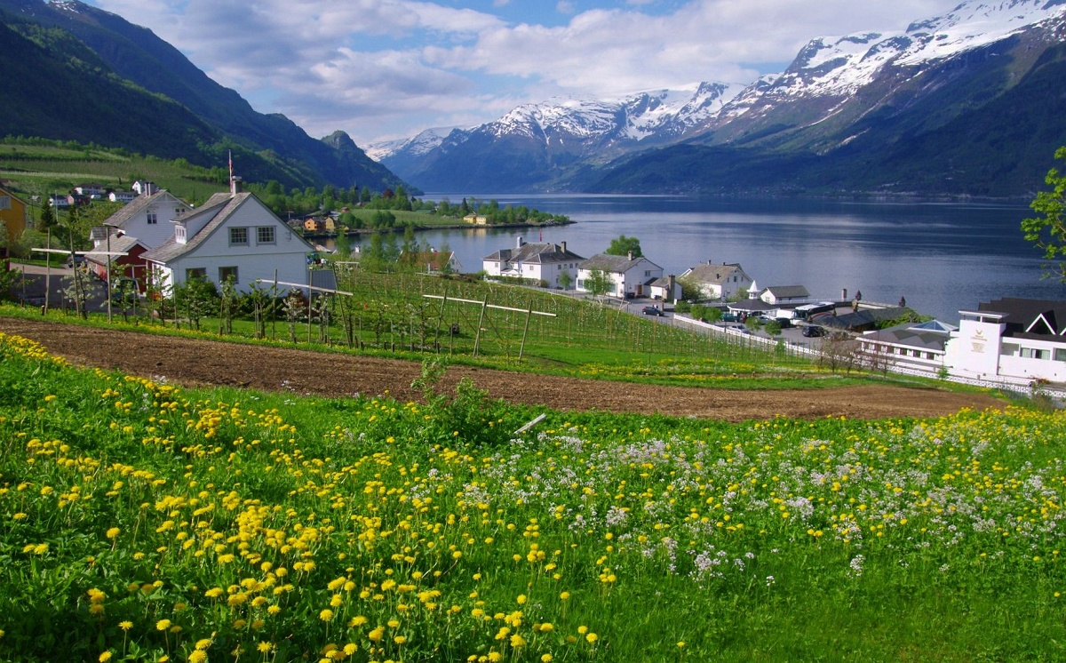 春の花が美しいハダンゲル・フィヨルド
