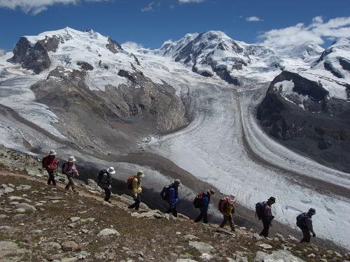雄大なゴルナー氷河をのぞむ