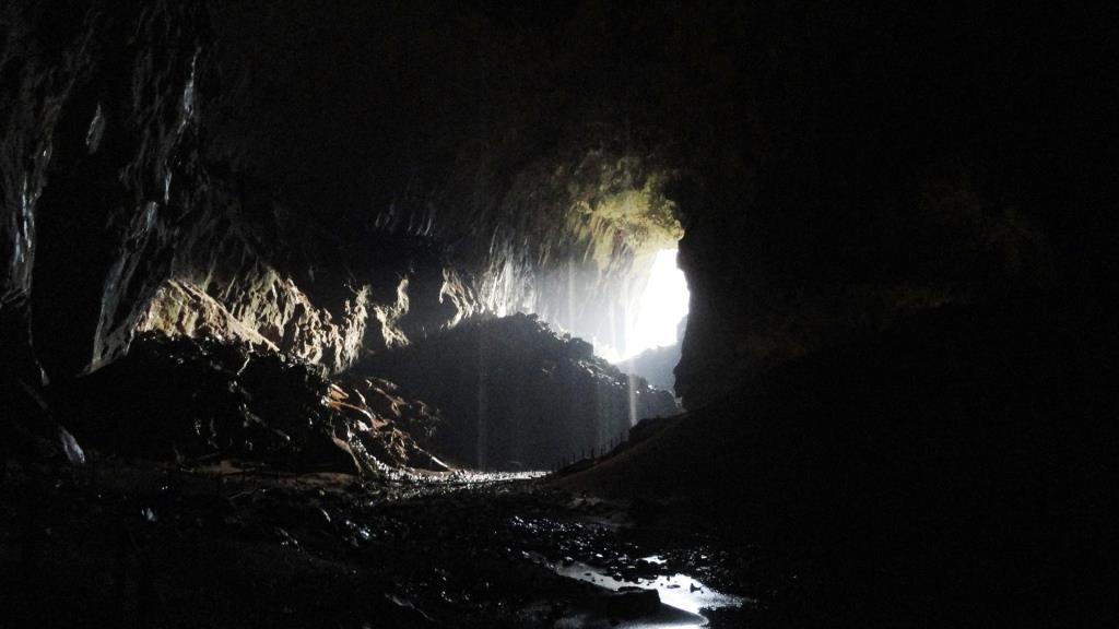 グルン・ムル国立公園のディア洞窟。髙さ100m、幅120mの大きさで広がる自然の作り出したトンネルが奥へと続く