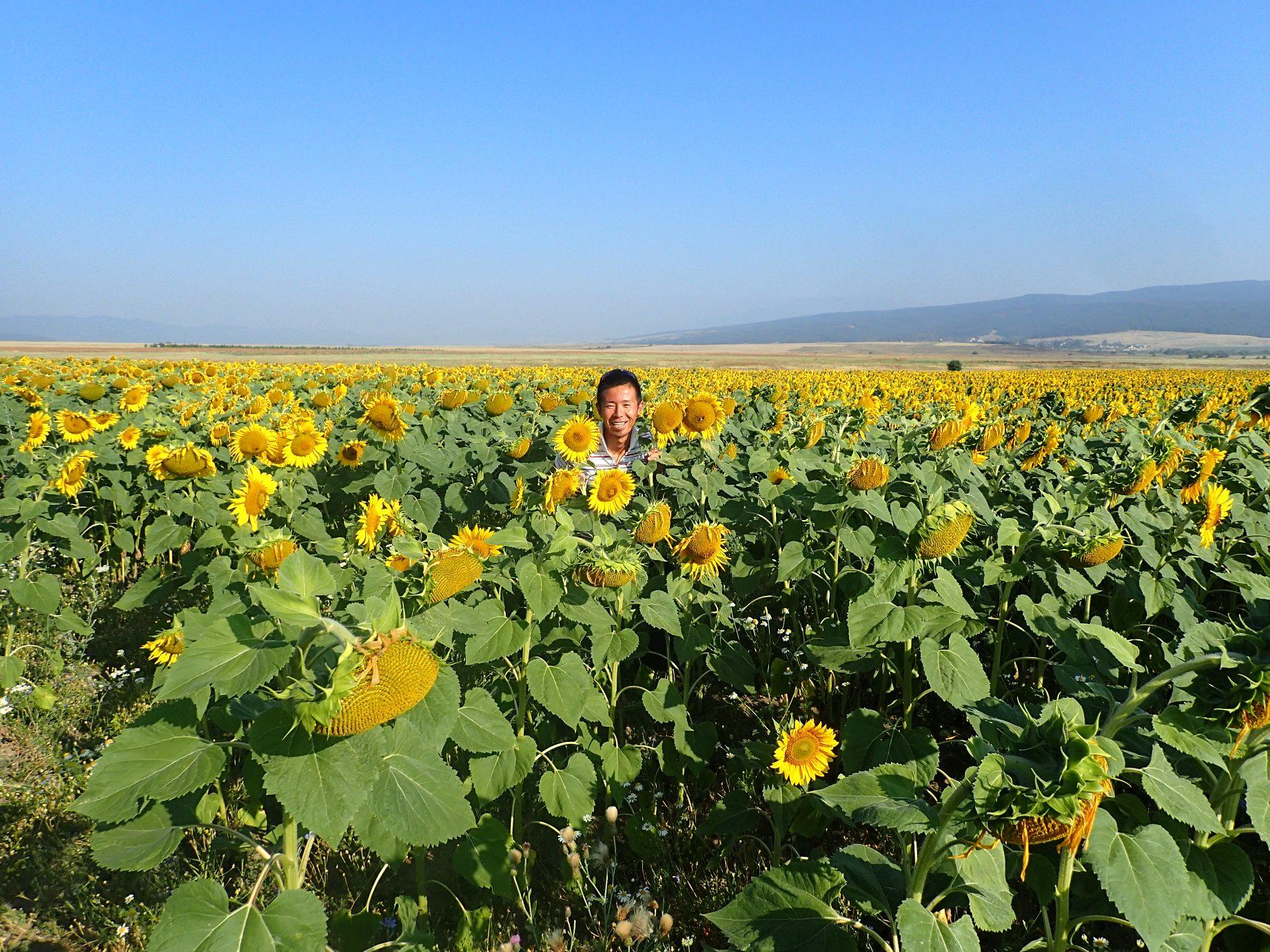 田舎らしい風景が広がるブルガリア