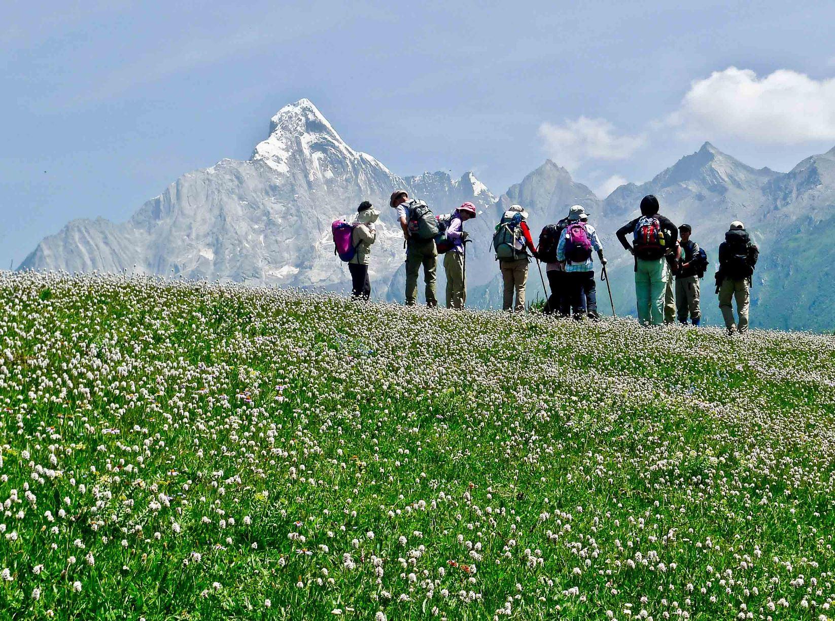 気持ちの良い尾根を歩く四姑娘山展望ハイキング