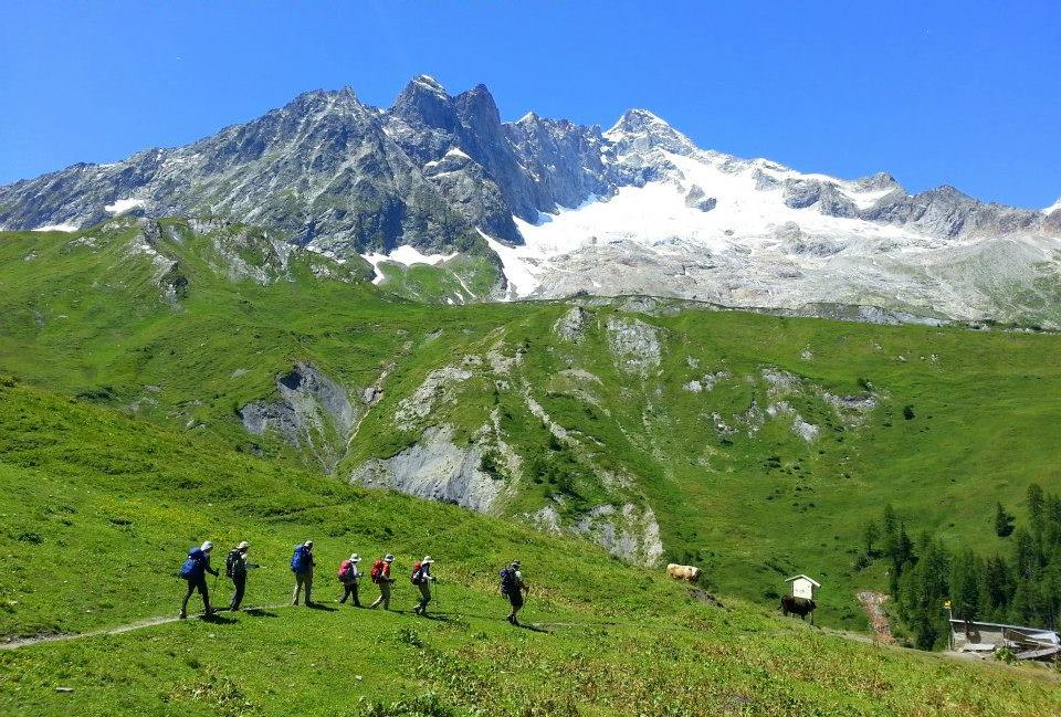 スイス側の美しい牧草地帯を歩く(8日目)