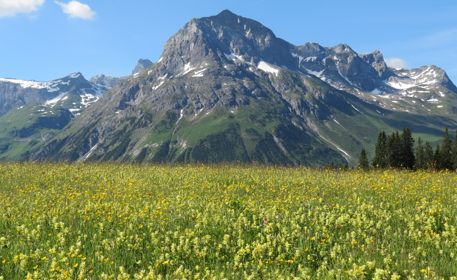 お花の多い2つのエリア(写真はレッヒ周辺)