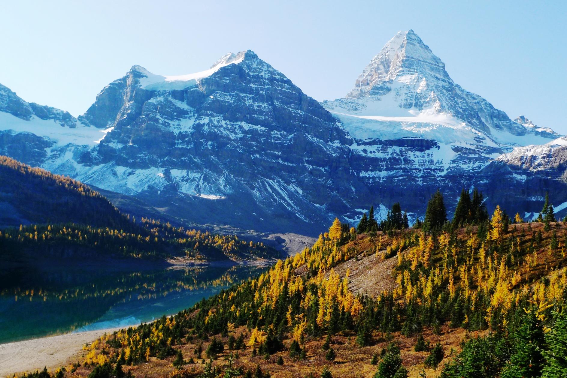 ロッキー屈指の人気を誇るMt.アシニボインは秋になると山麓がカラマツの黄葉で彩る