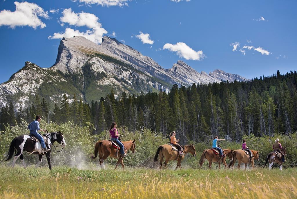 オプショナルツアーでは乗馬体験も可能(別料金)