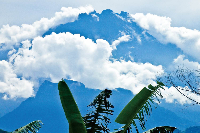 威風堂々、山麓から見るキナバル山