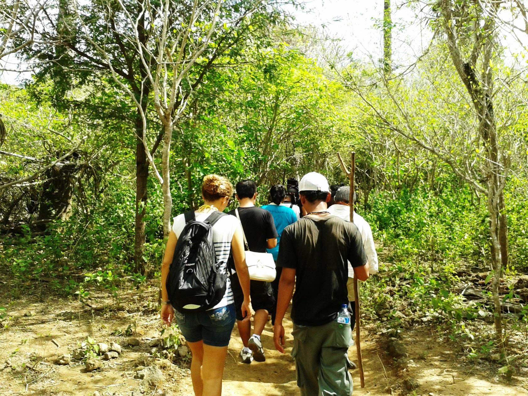 コモド島のハイキング・トレイルを行く(3日目)