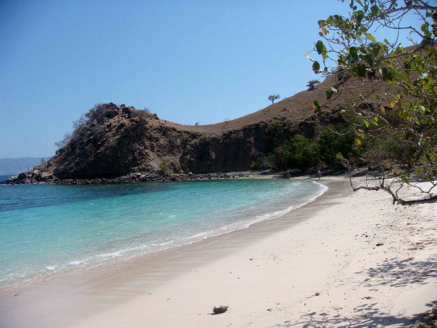 コモド島の美しいピンク・ビーチ(3日目)