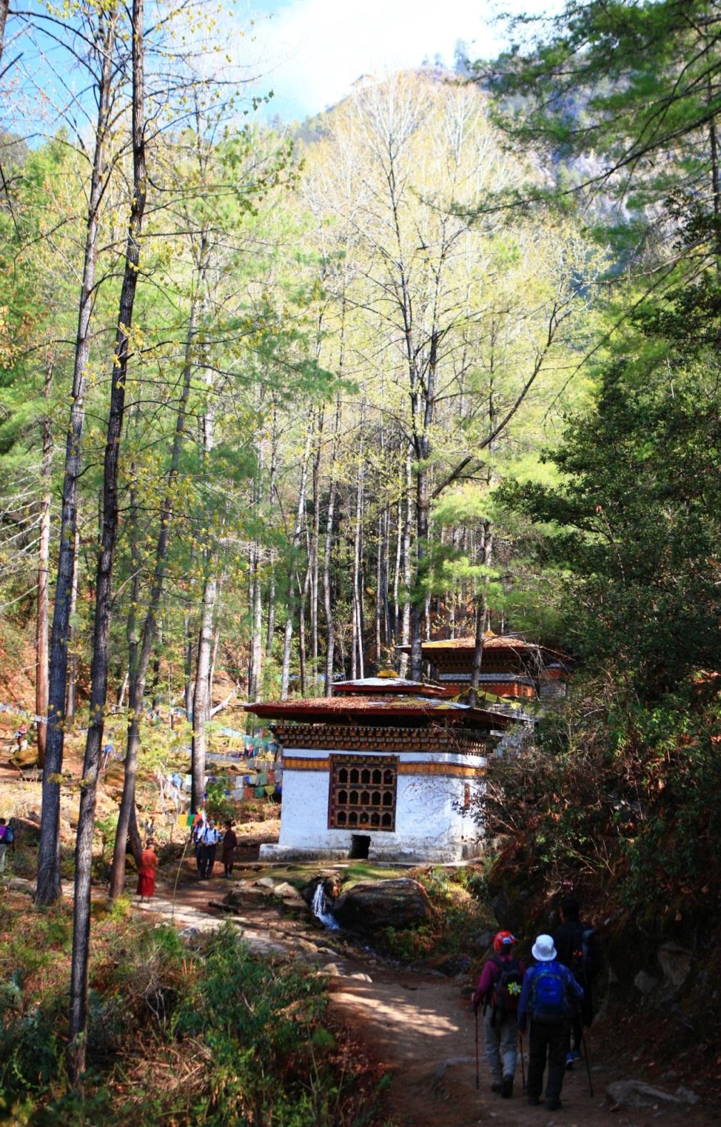 タクツァン僧院までは緑豊かな森を歩く