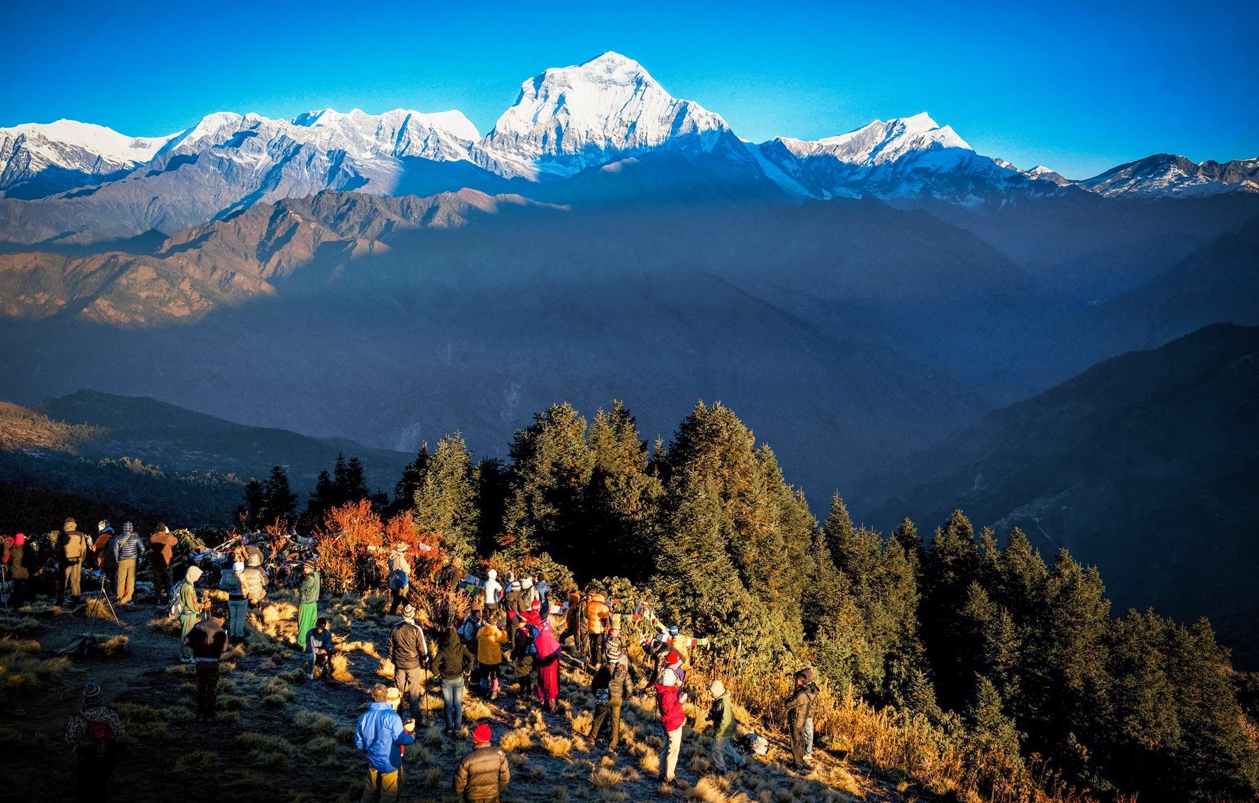 プーン・ヒルで迎えるヒマラヤの朝、正面は世界第7位の高峰ダウラギリⅠ峰(8,167m)(4日目)