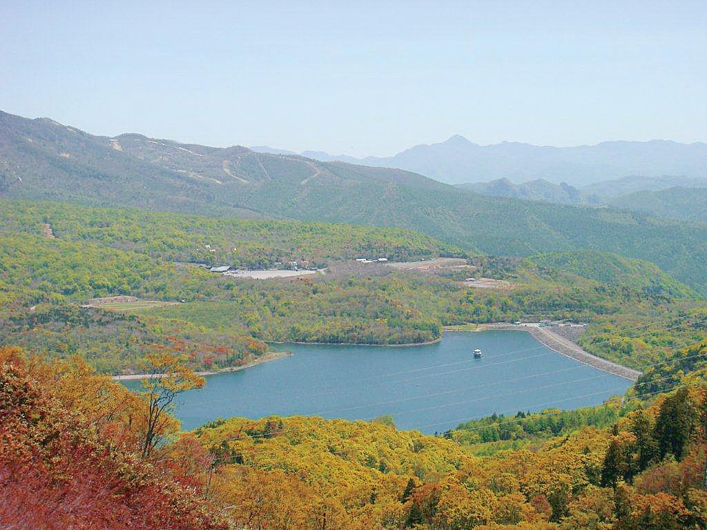 色づいたブナ林と玉原湖