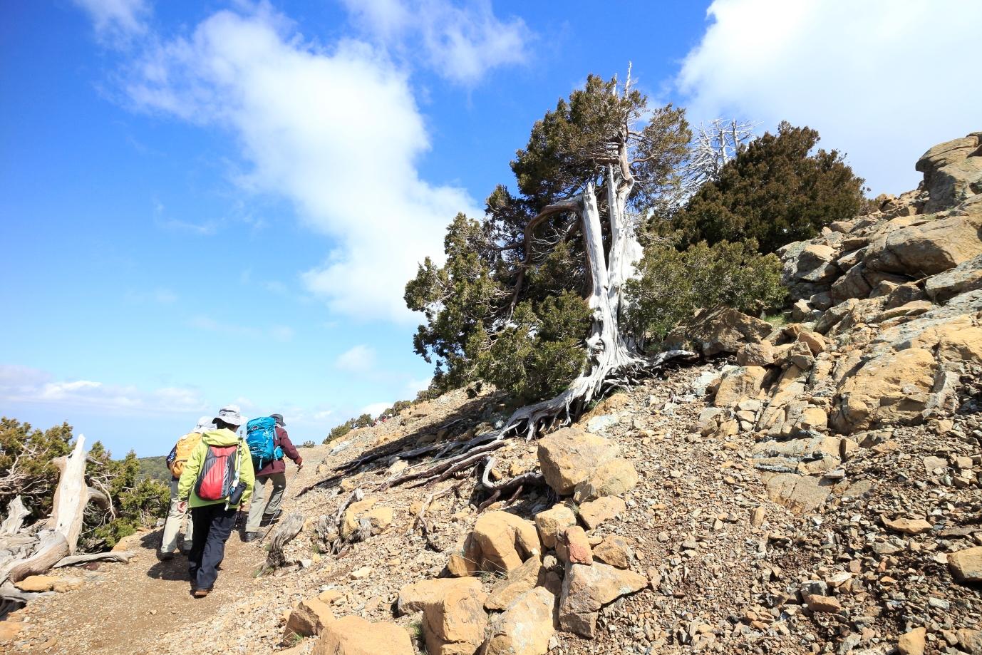 オリンポス山一周ハイキング(6日目)