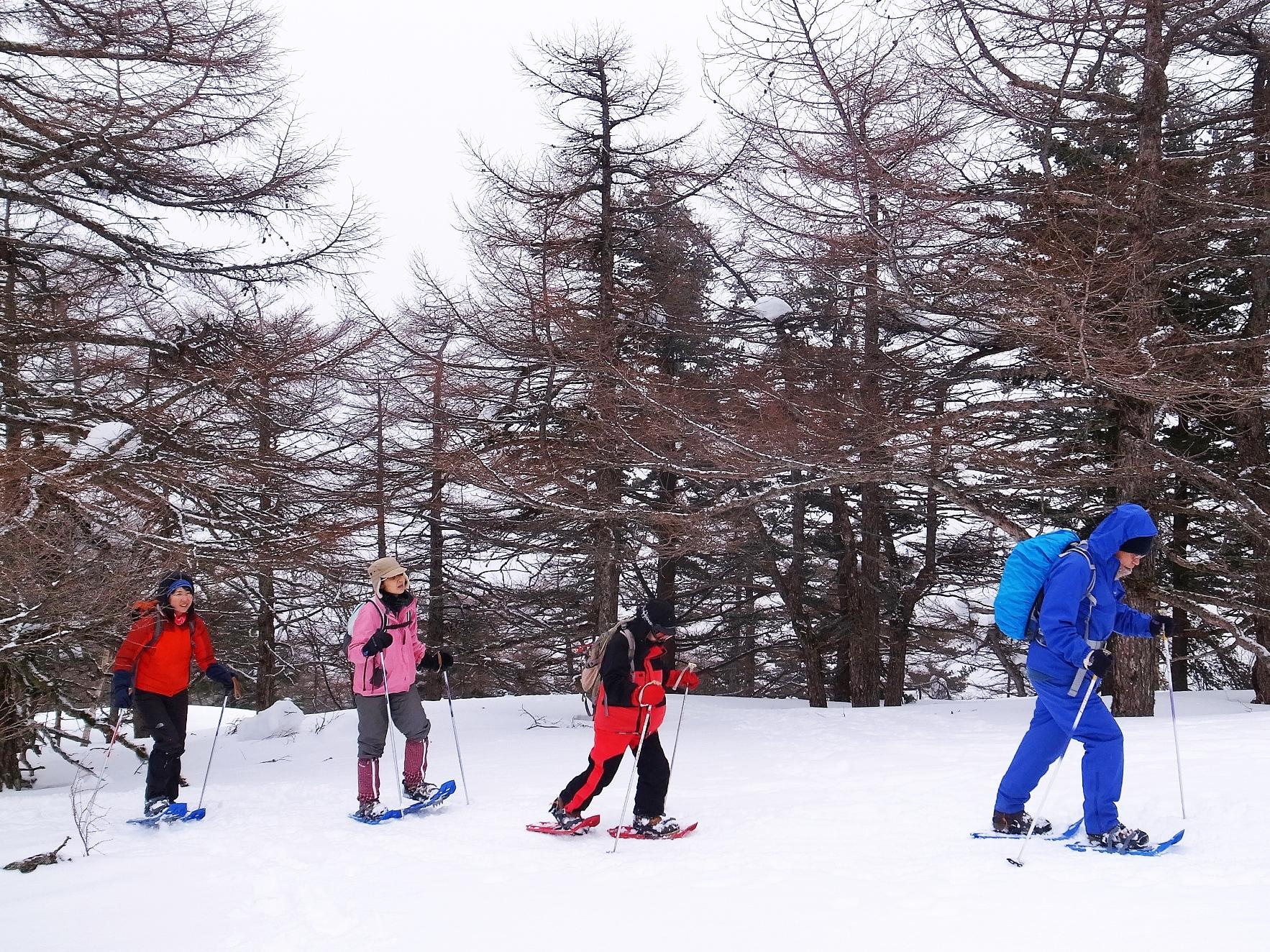 スノーシューを履いて雪上のハイキングへ
