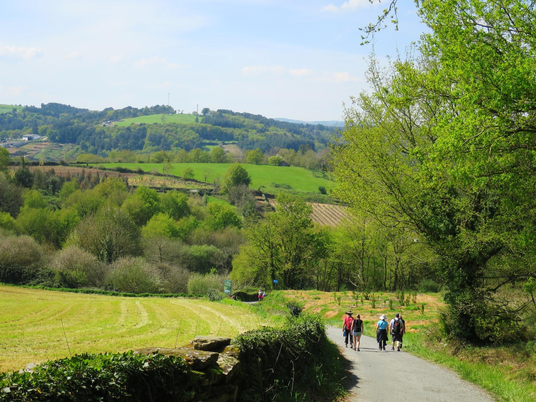 ゆるやかな丘が連なるガリシア州の巡礼路を歩く