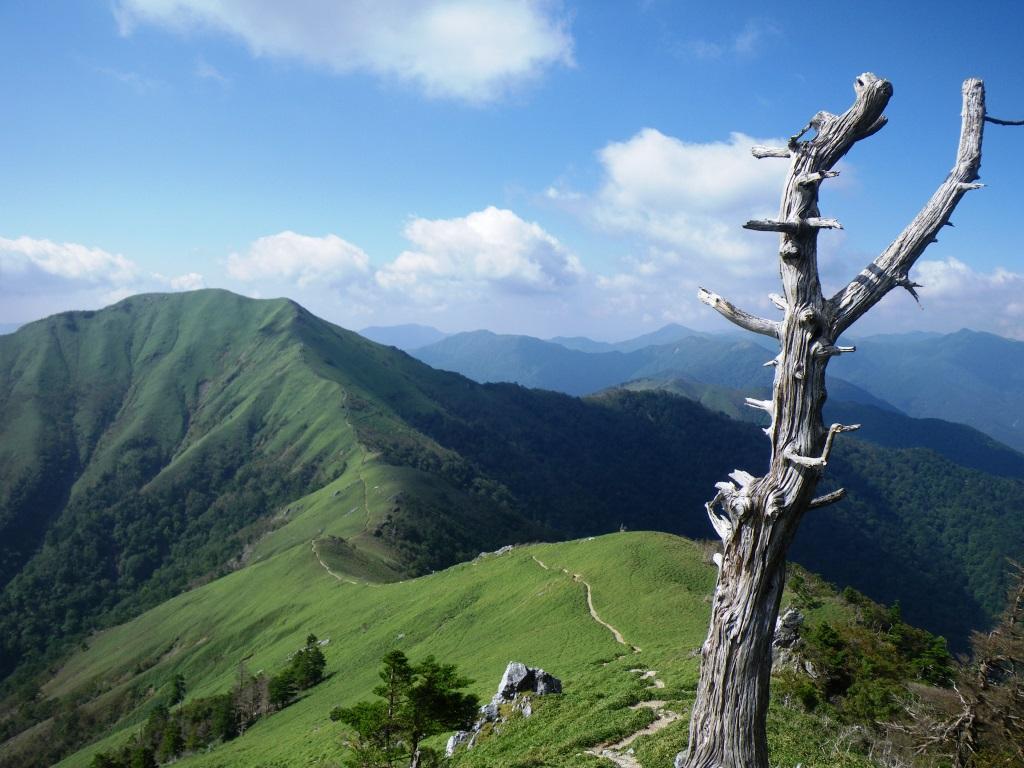 剣山から次郎岌へ続くたおやかな稜線