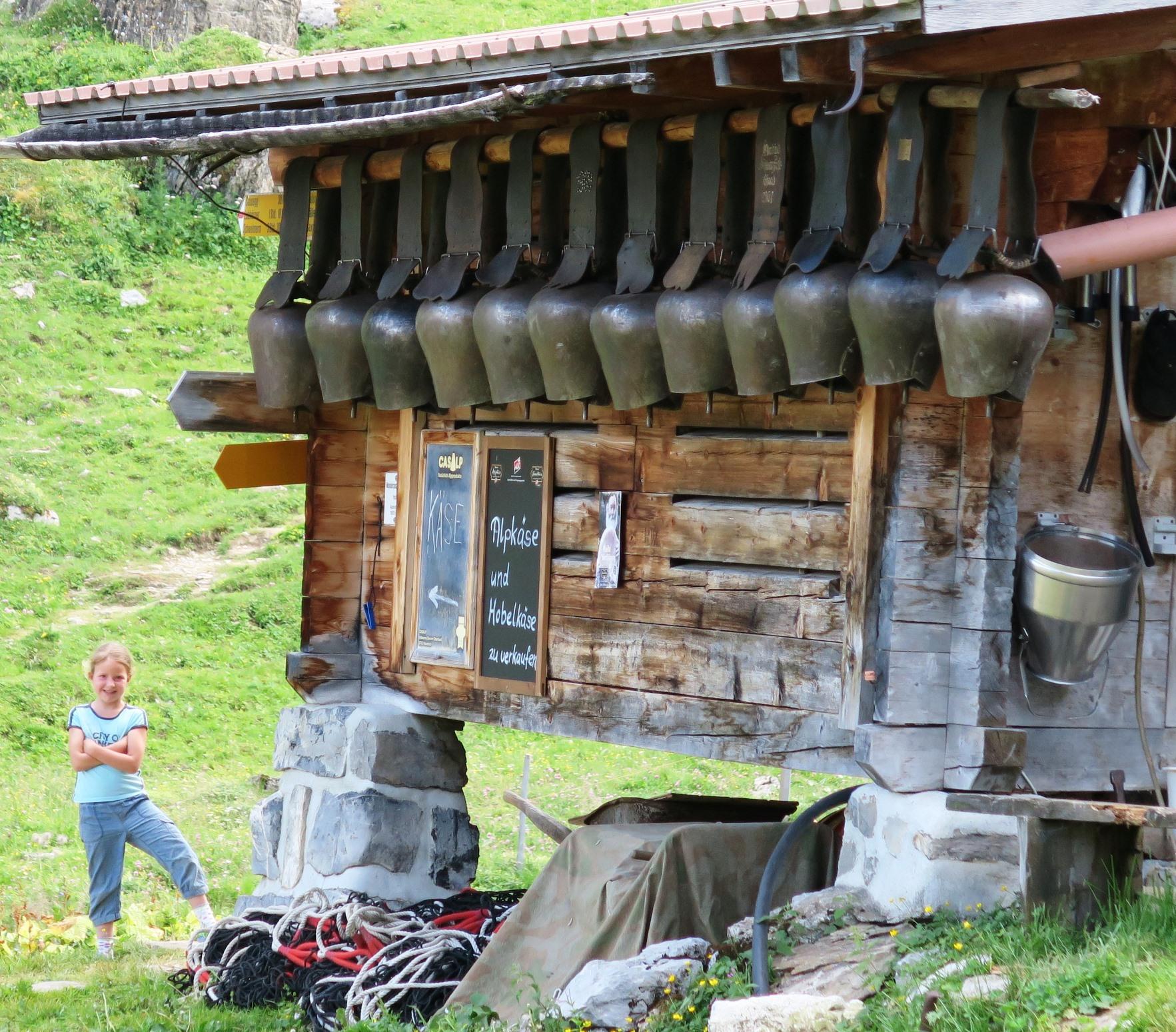 山中のチーズ小屋でアルプスの少女と出会う