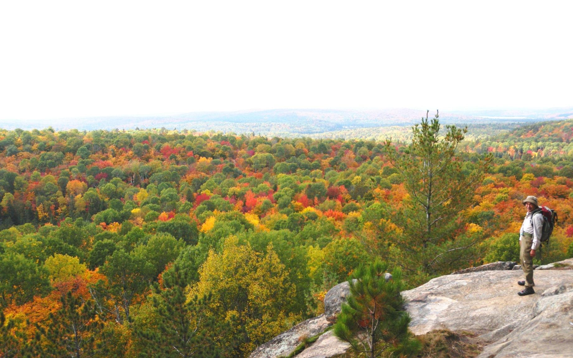 静寂に包まれたハイキングコースでアルゴンキンの紅葉を堪能する