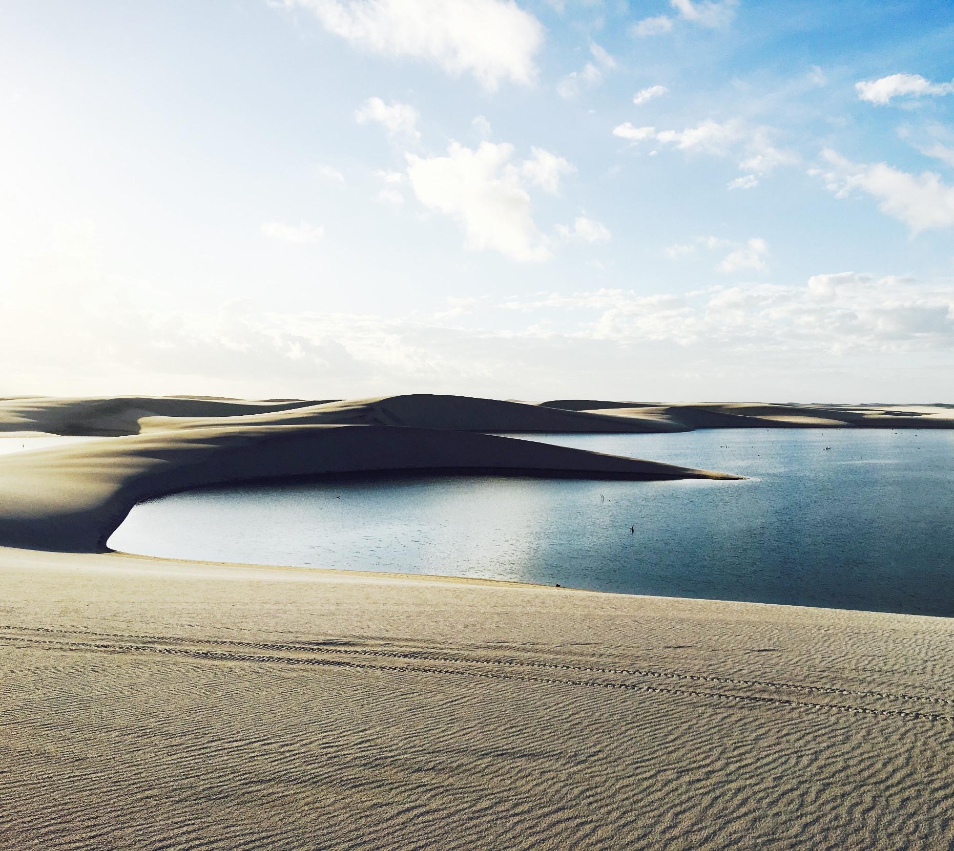 朝日を浴びて砂丘の陰影が浮かび上がる