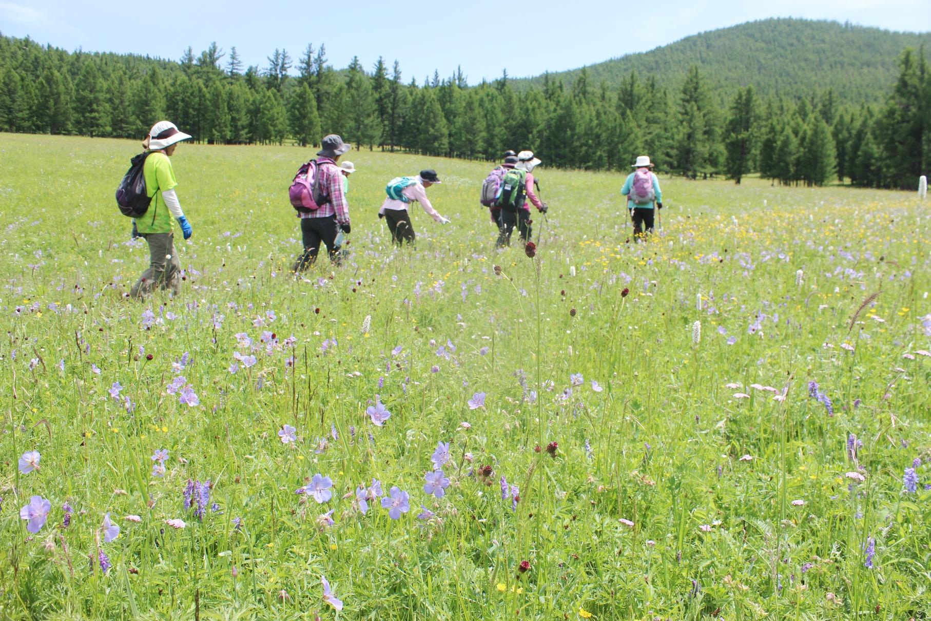 花が咲き誇るツェンケル周辺でハイキング(4日目)