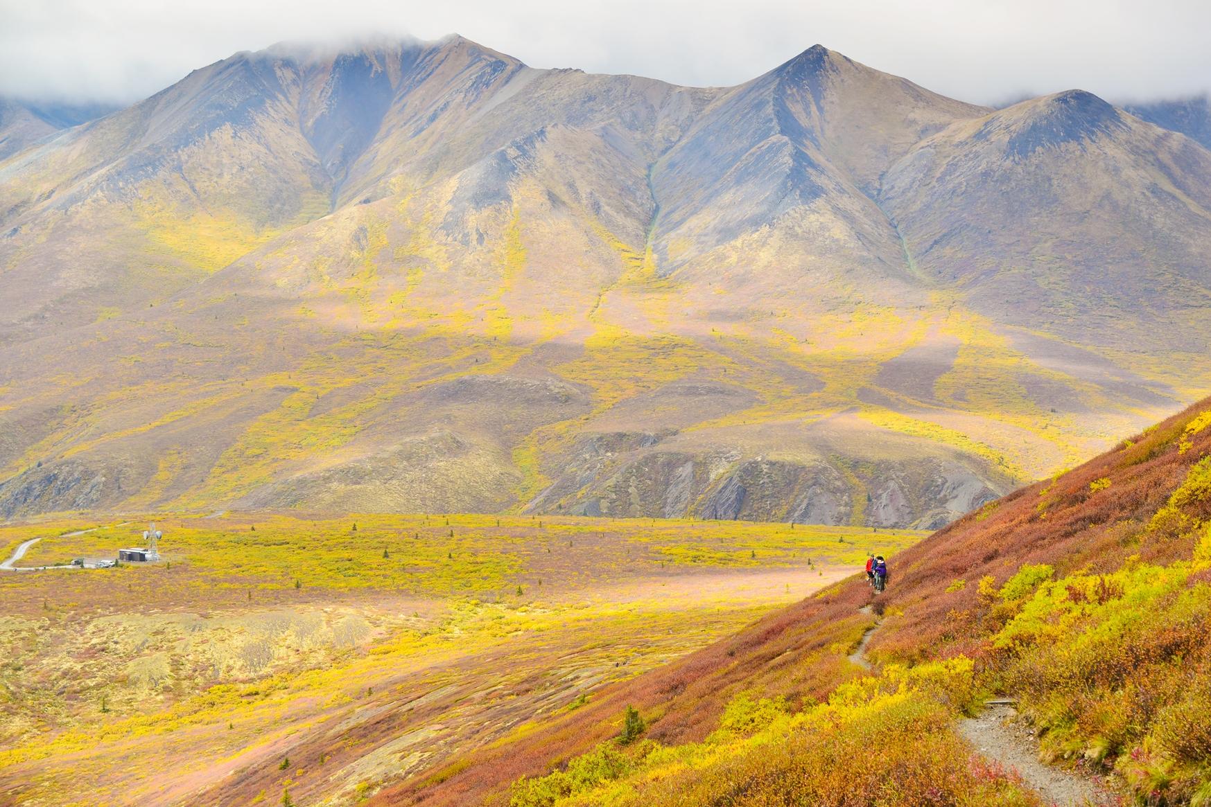 極北の手付かずの自然の中でハイキングを楽しむ