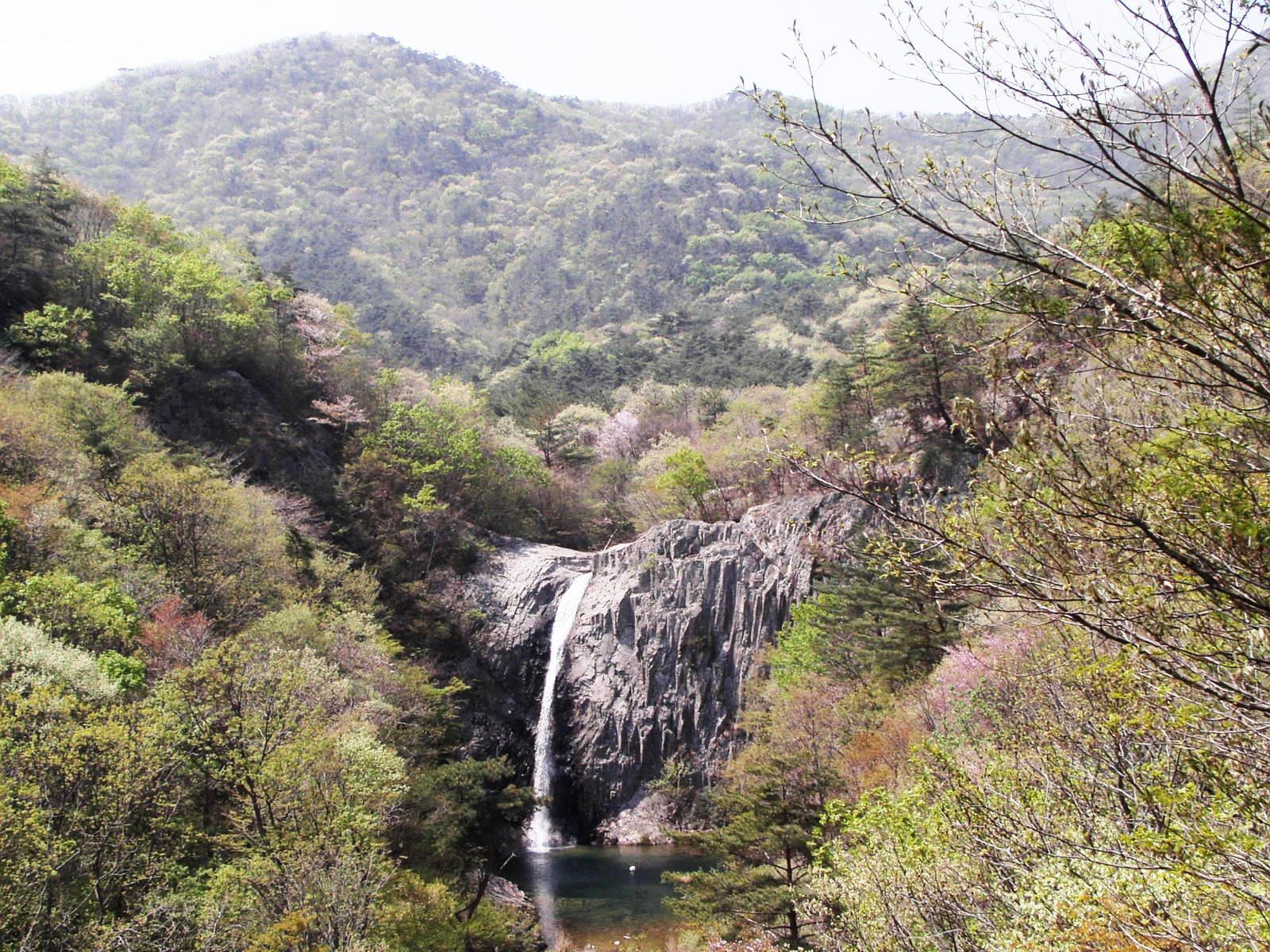ツツジ咲く辺山半島の直沼瀑布(チクソポッポ)(3日目)