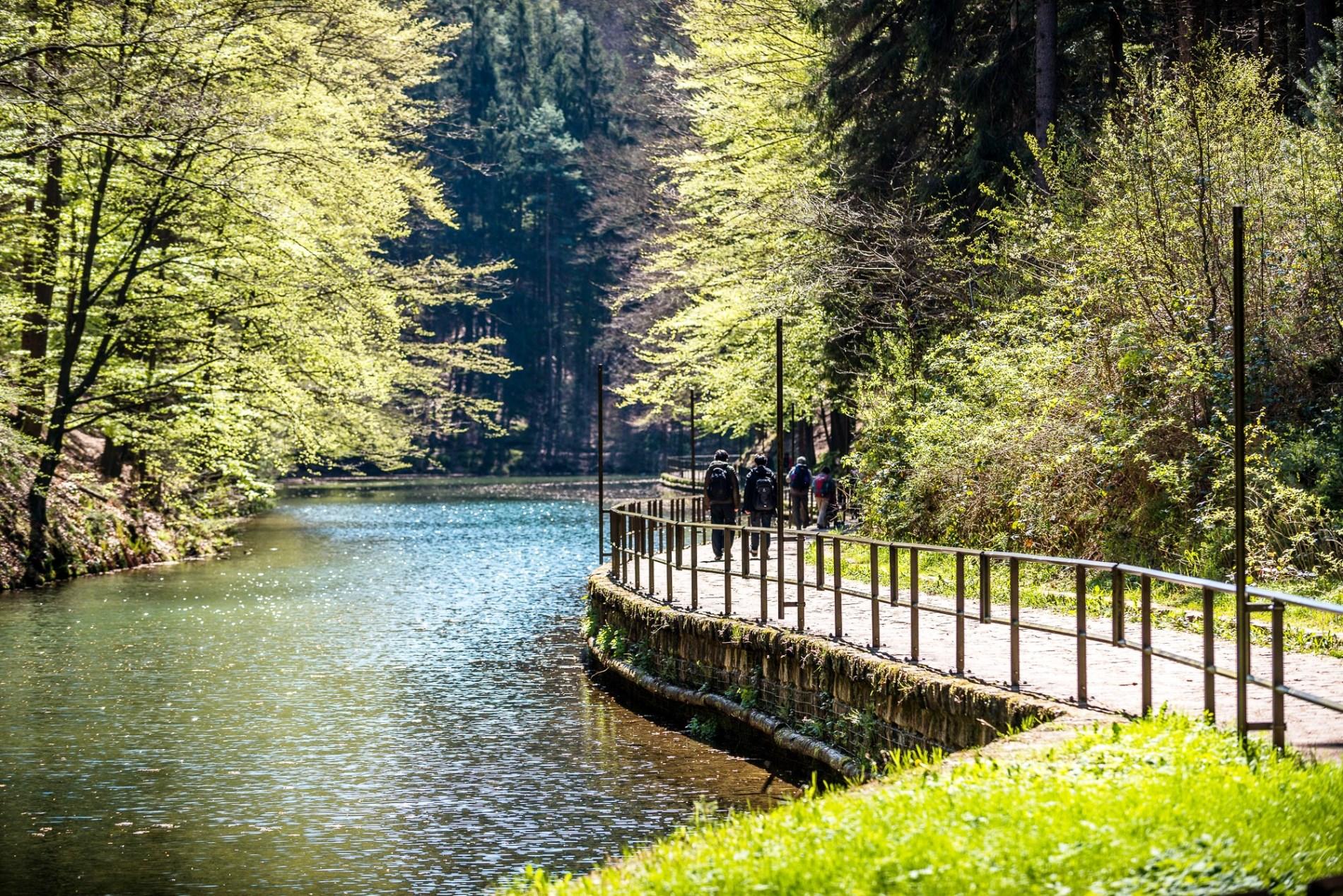 アムゼル湖畔を歩く(5日目) ©Achim Meurer Tourismusverband Sächsische Schweiz e.V.