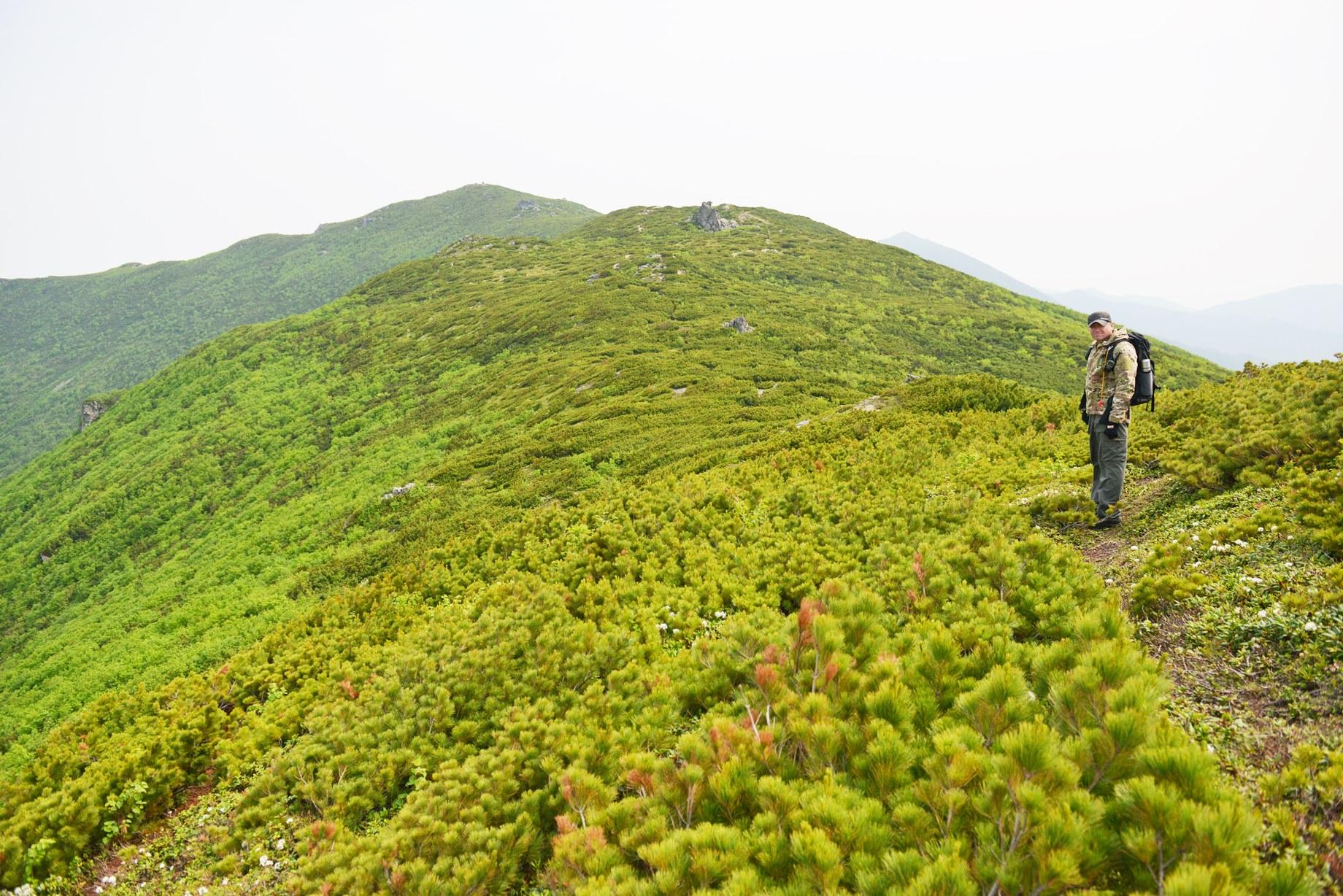 サハリン南部の名峰チェーホフ山へ