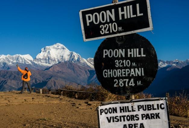 コース中のハイライトでもあるプーンヒルからのダウラギリⅠ峰(8,167m)