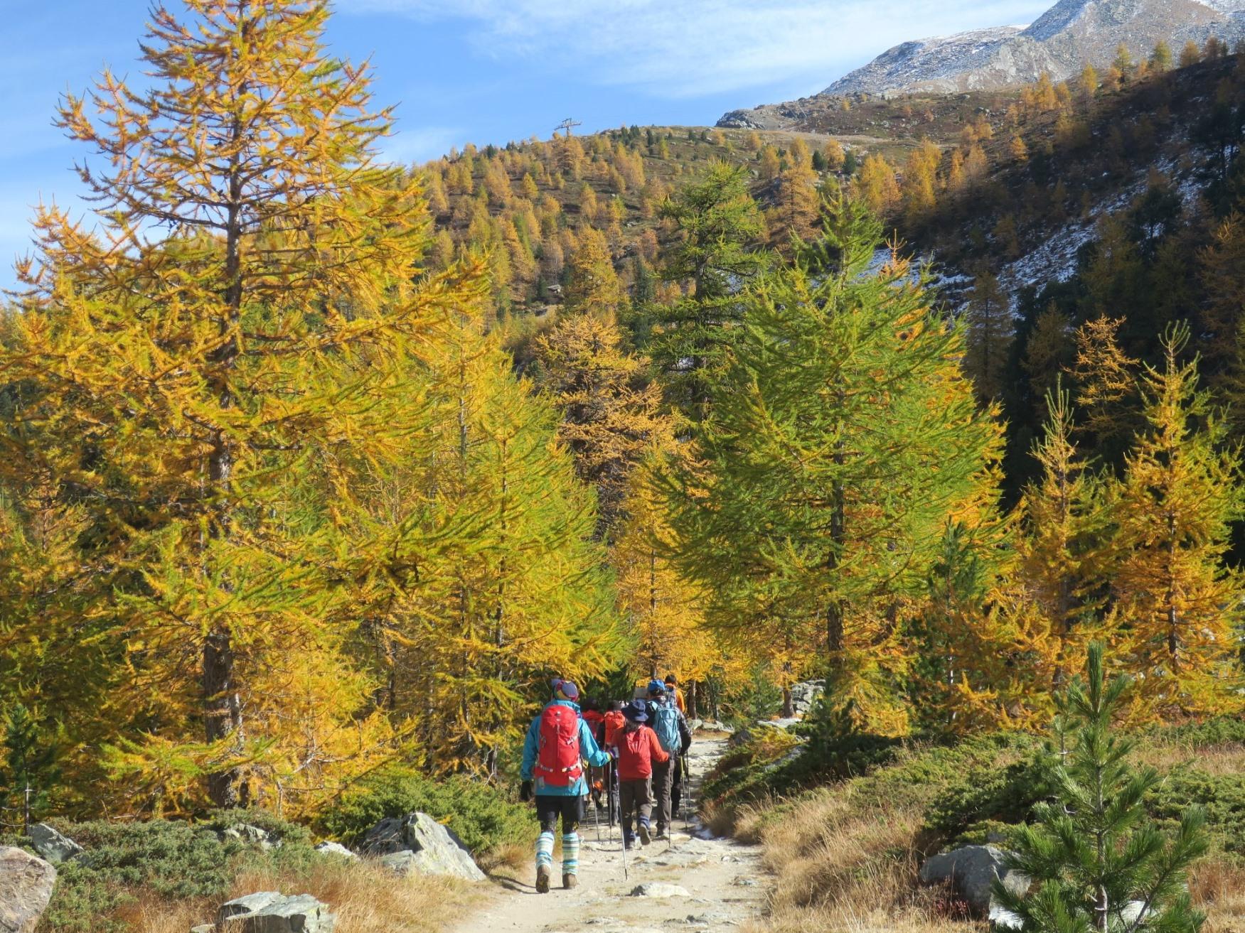 山上湖を巡るハイキングへ(3日目)