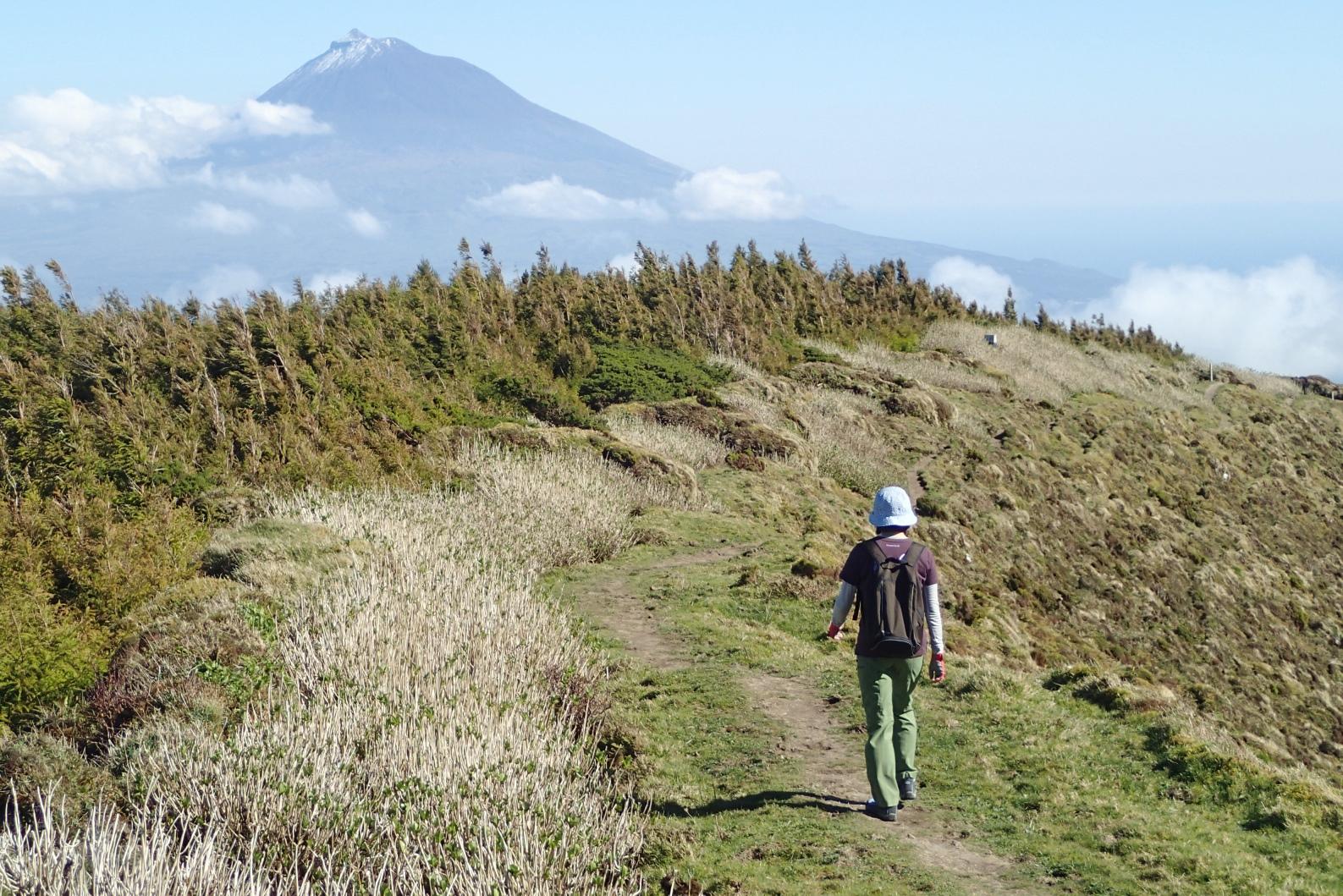 ファイアル島のハイキング、正面にポルトガル最高峰のピコ山を望む(5日目)
