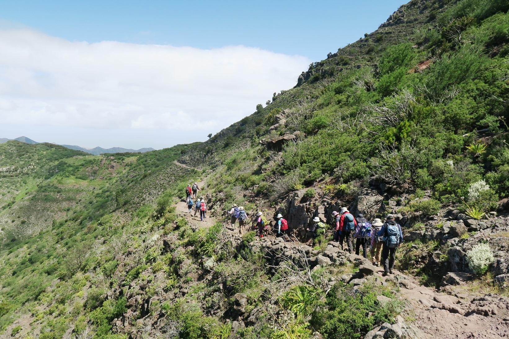 テネリフェ島のテノ山地ハイキング(3日目)