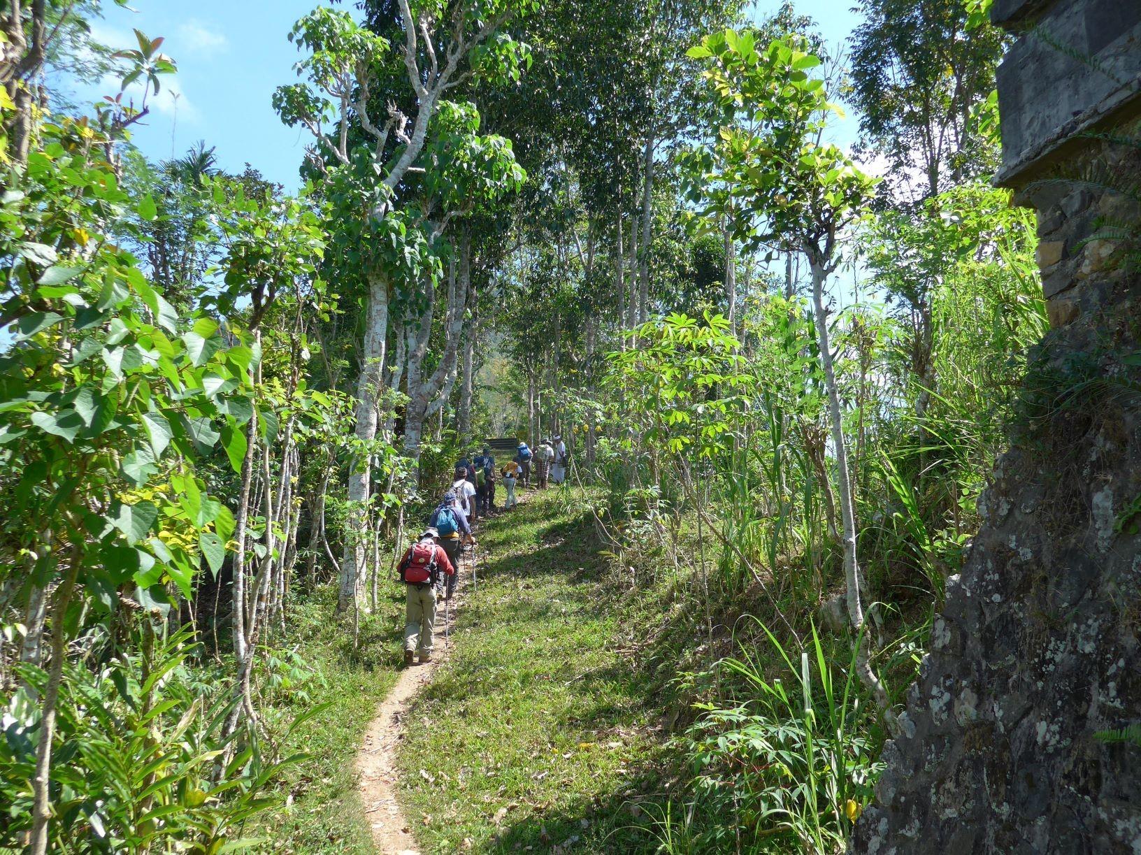 ランプヤン山ハイキング、瞑想ポイントまでのトレイルを進む(2日目)