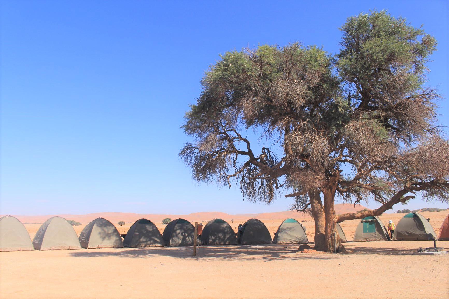 セスリエムの快適なキャンプサイト