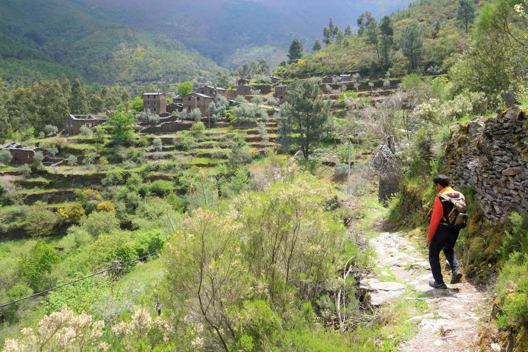 ピオダン村より隣村へとトレイルを歩く、見事な段々畑が広がる(4日目)
