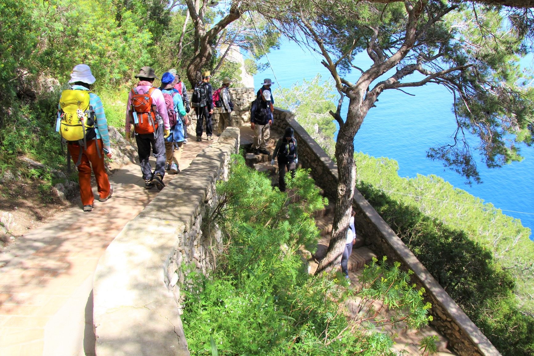 カプリ島のハイキング(5日目)