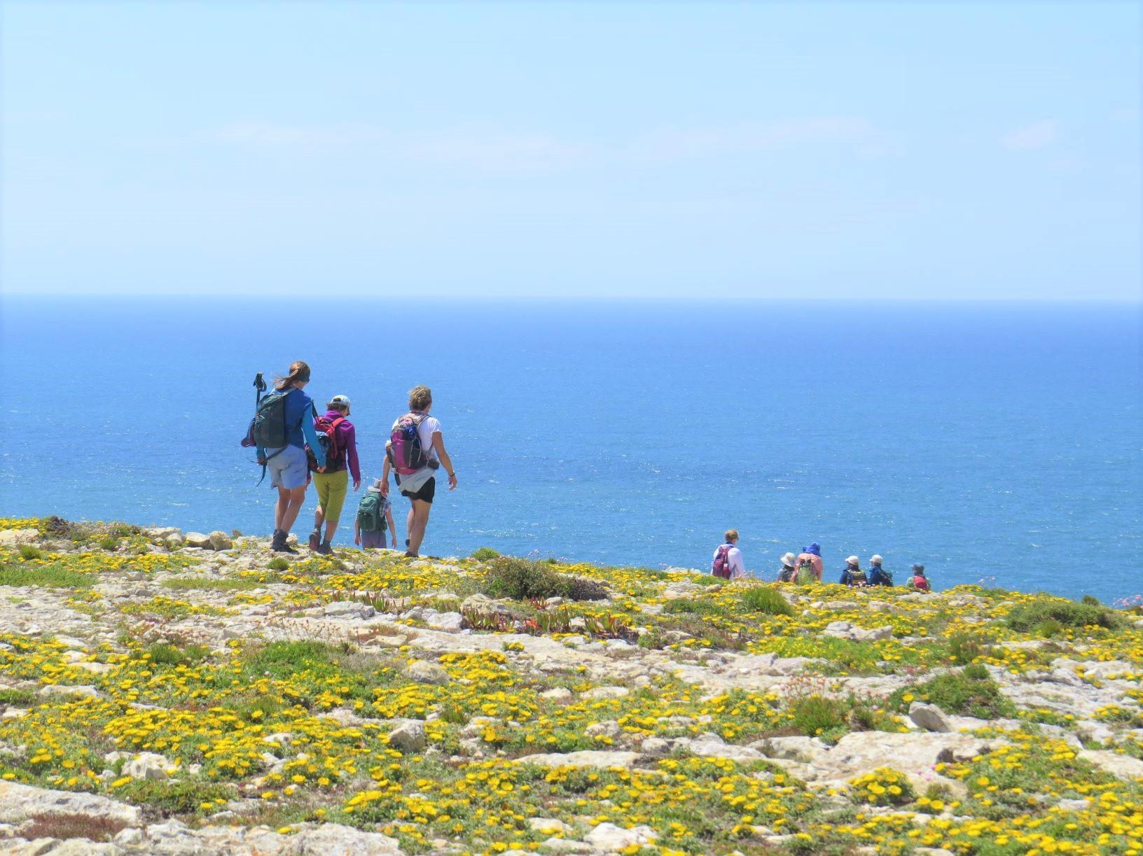 サン・ヴィンセンテ岬に向かって「ロタ・ヴィンセンティナ」のトレイルを歩く(6日目)