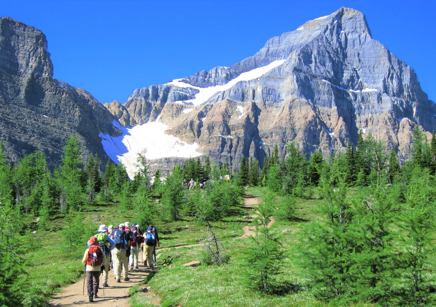 登頂とショートハイキングを交互に取り入れた日程でご案内