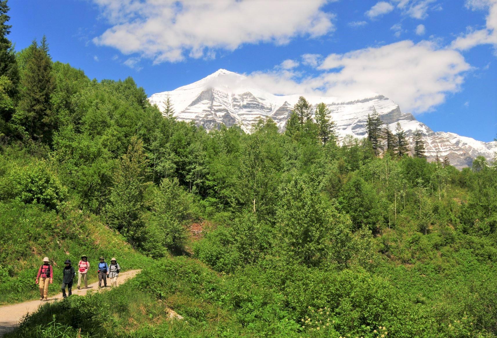 カナディアン・ロッキー最高峰Mt.ロブソン(3,954m)