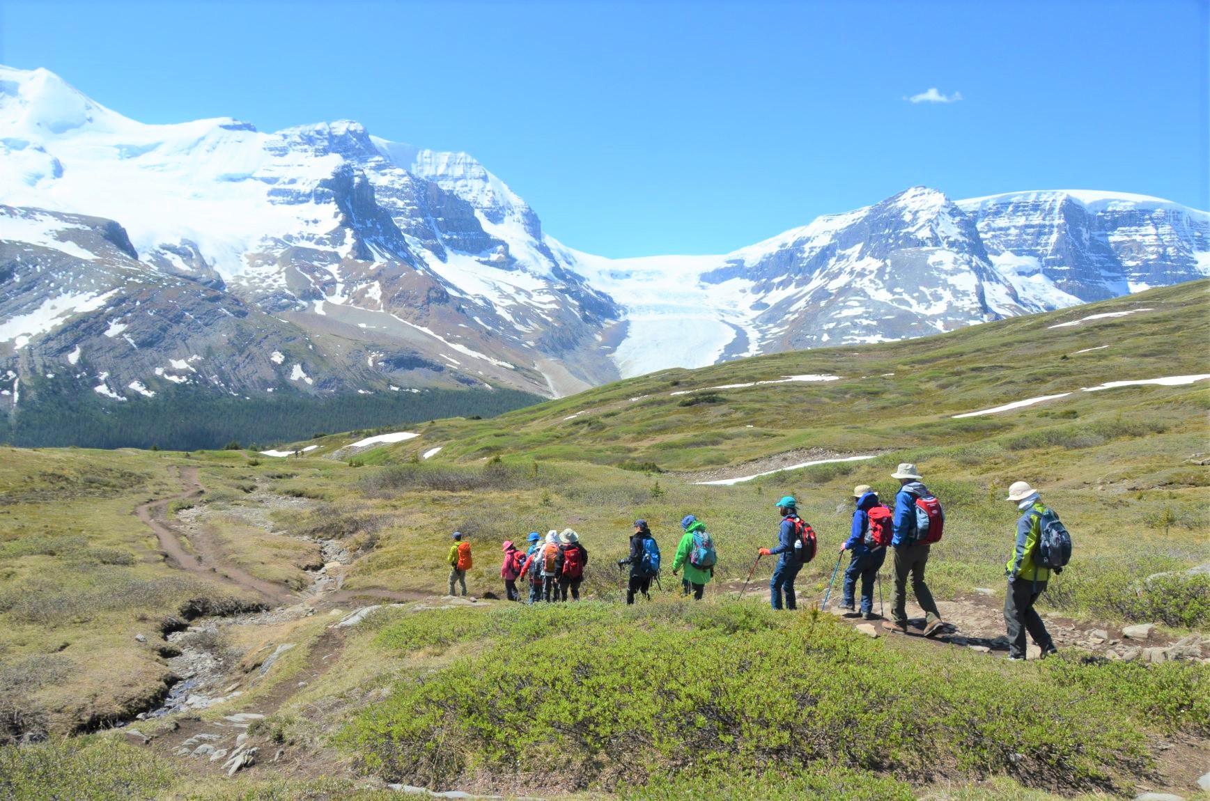 3,000m級の山々と氷河の絶景が広がるウィルコックスメドウにて(3日目)