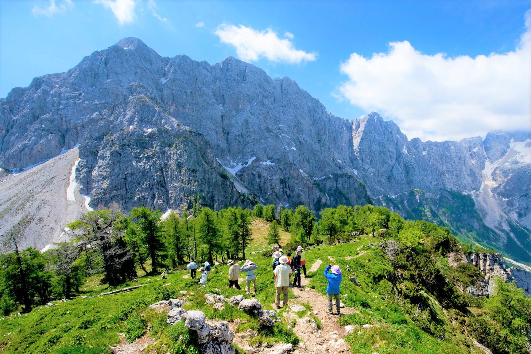 ヴァルシチ峠からユリアン・アルプスの好展望地を目指す(6日目)