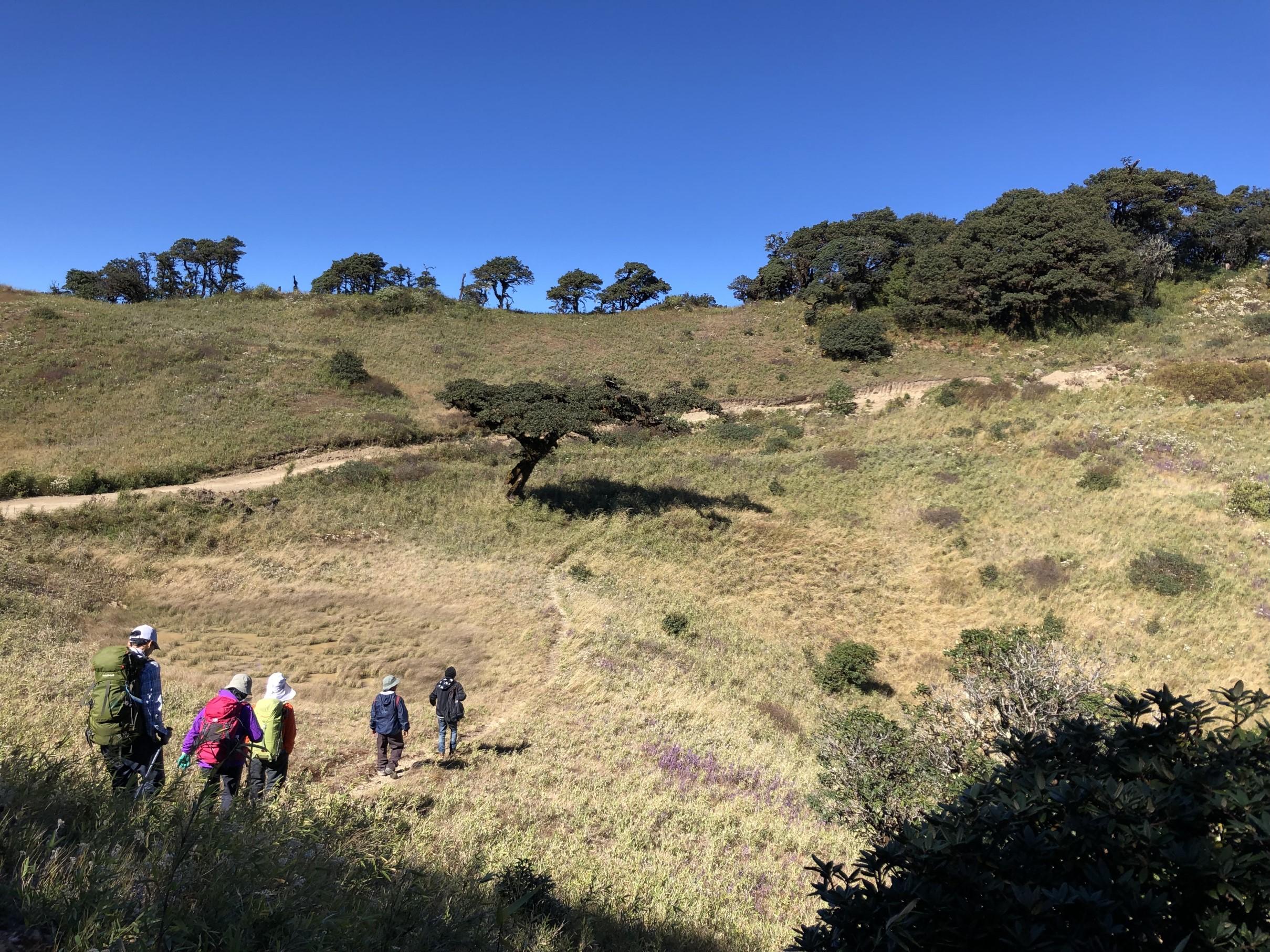 整備された登山道を歩き山頂を目指す(4日目)