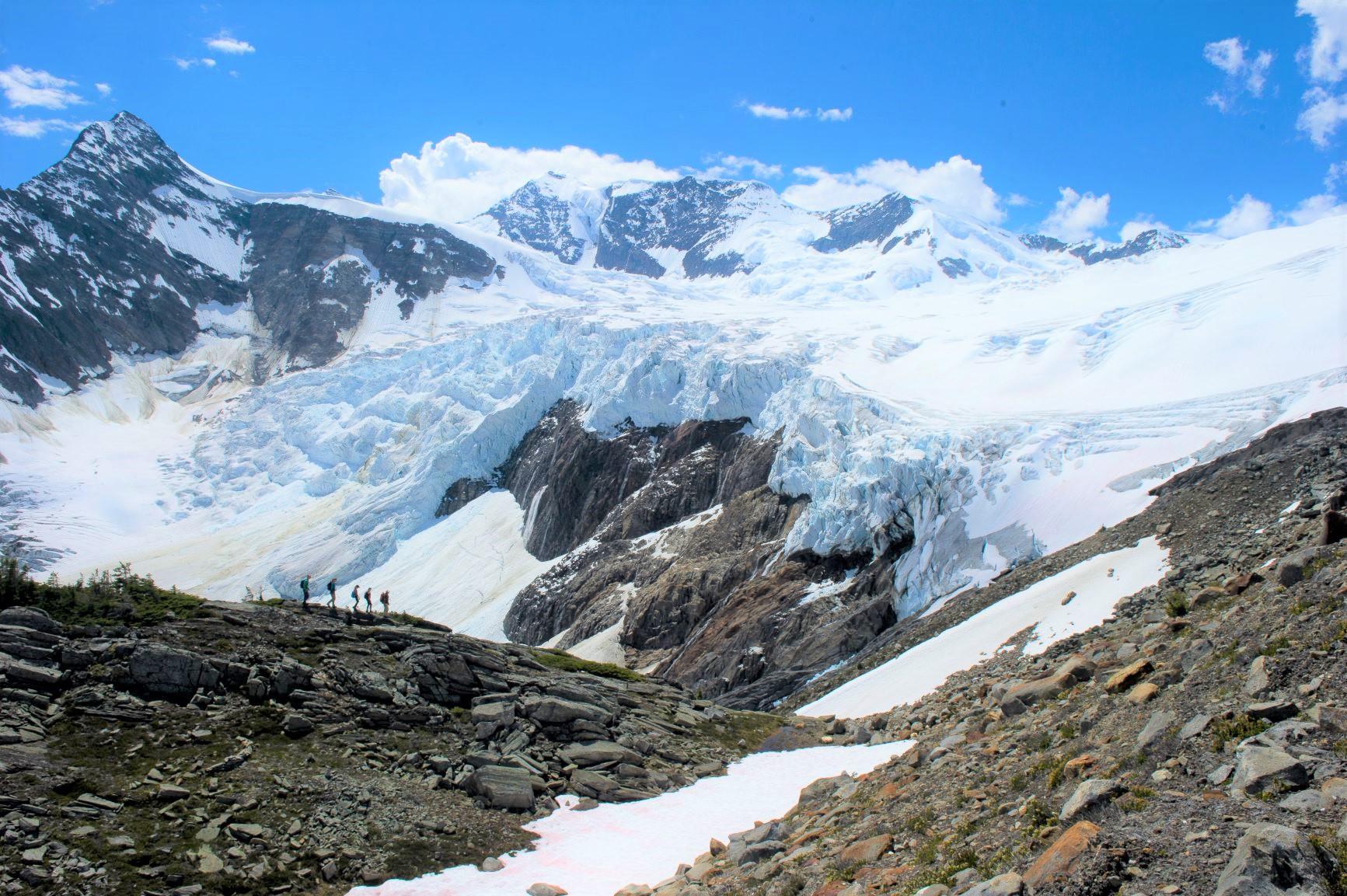 巨大な氷河のすぐ近くを歩けるのもCMHの魅力のひとつ