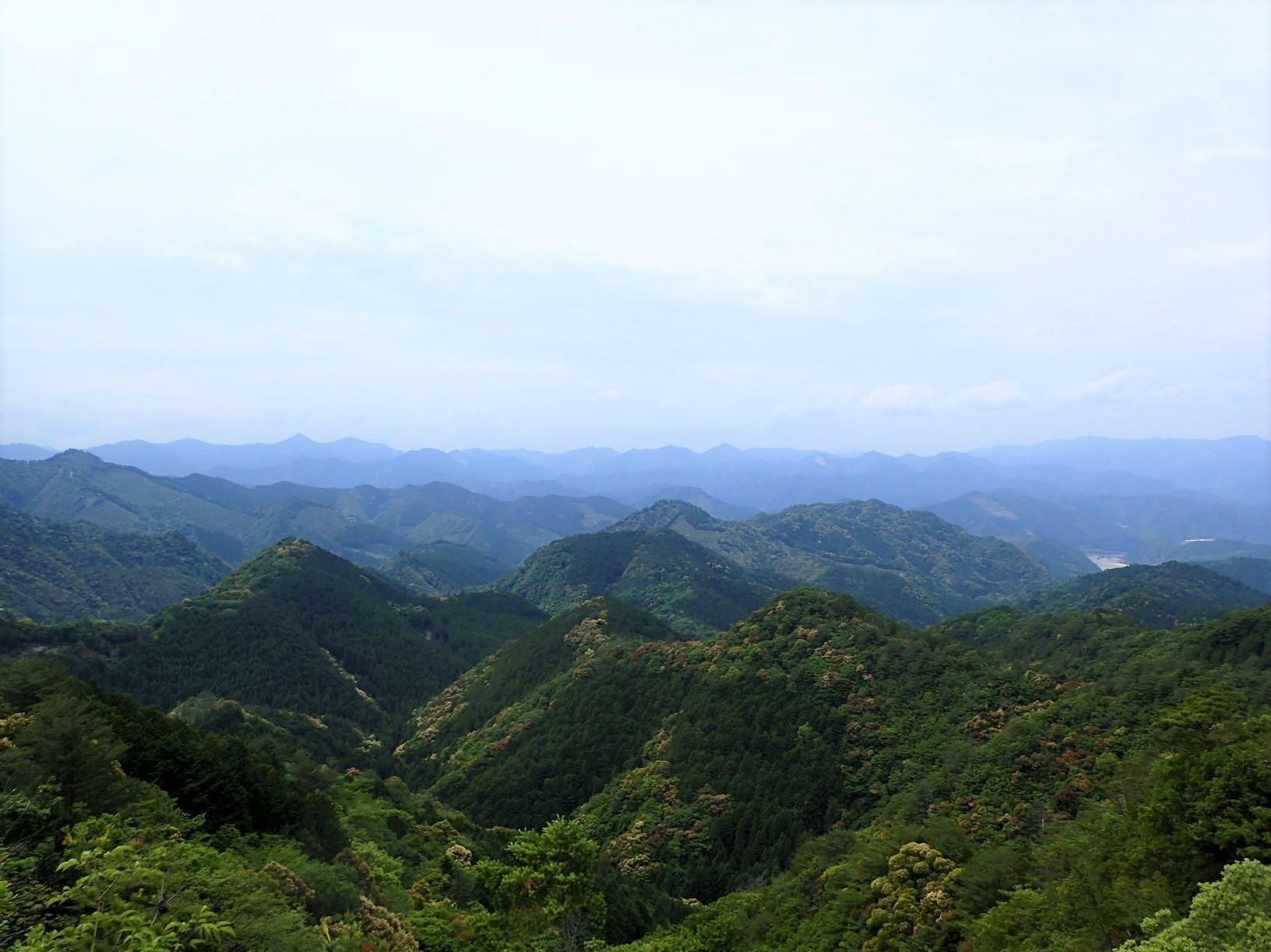 熊野の深い山々