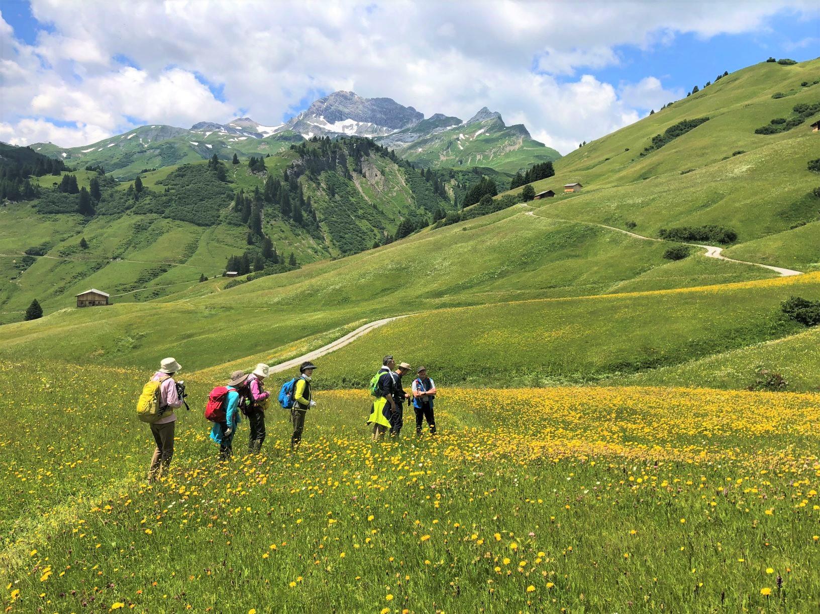花咲くアルムを歩くチロルらしいハイキング(5日目)