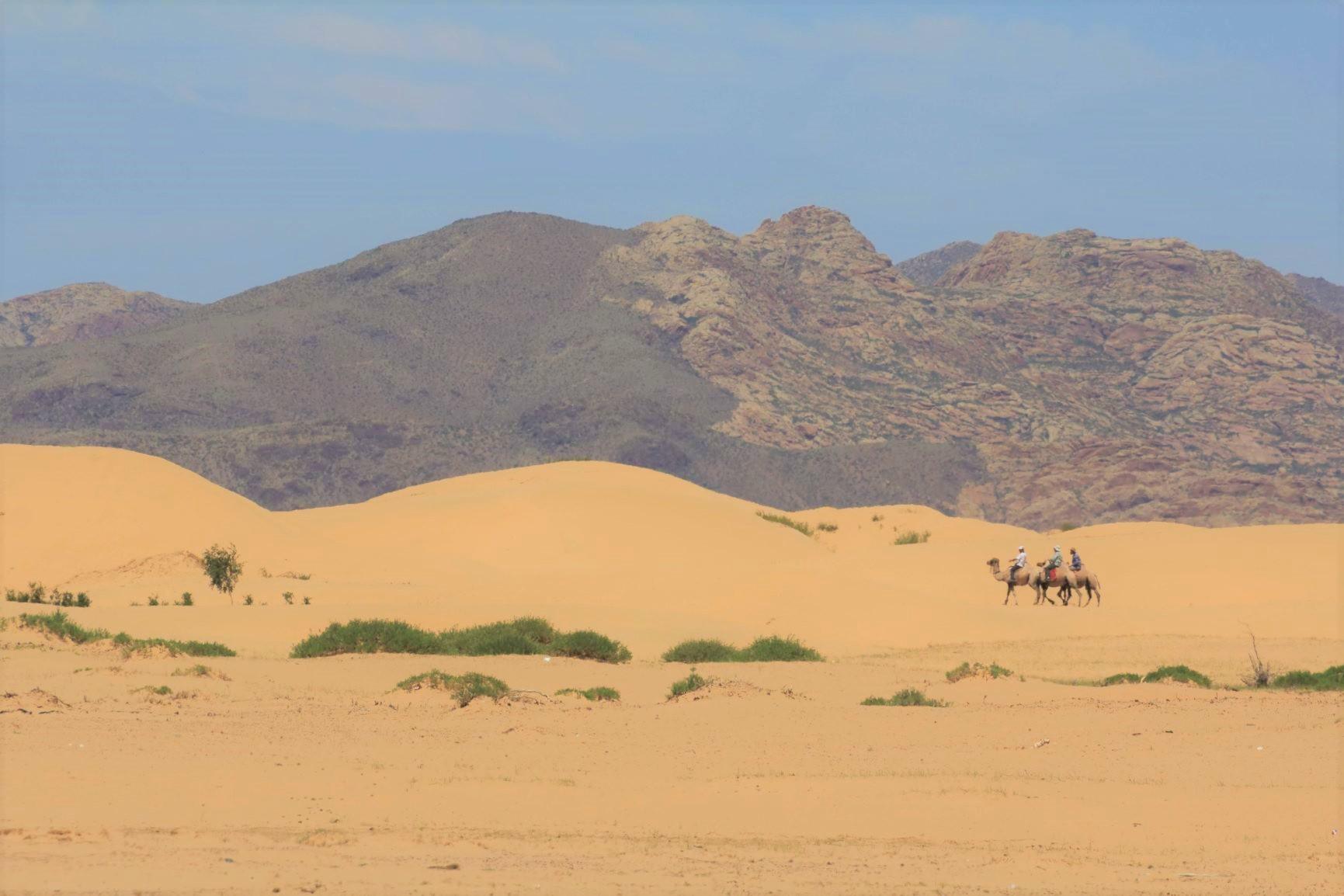 ゴビ砂漠の一部の砂丘地帯