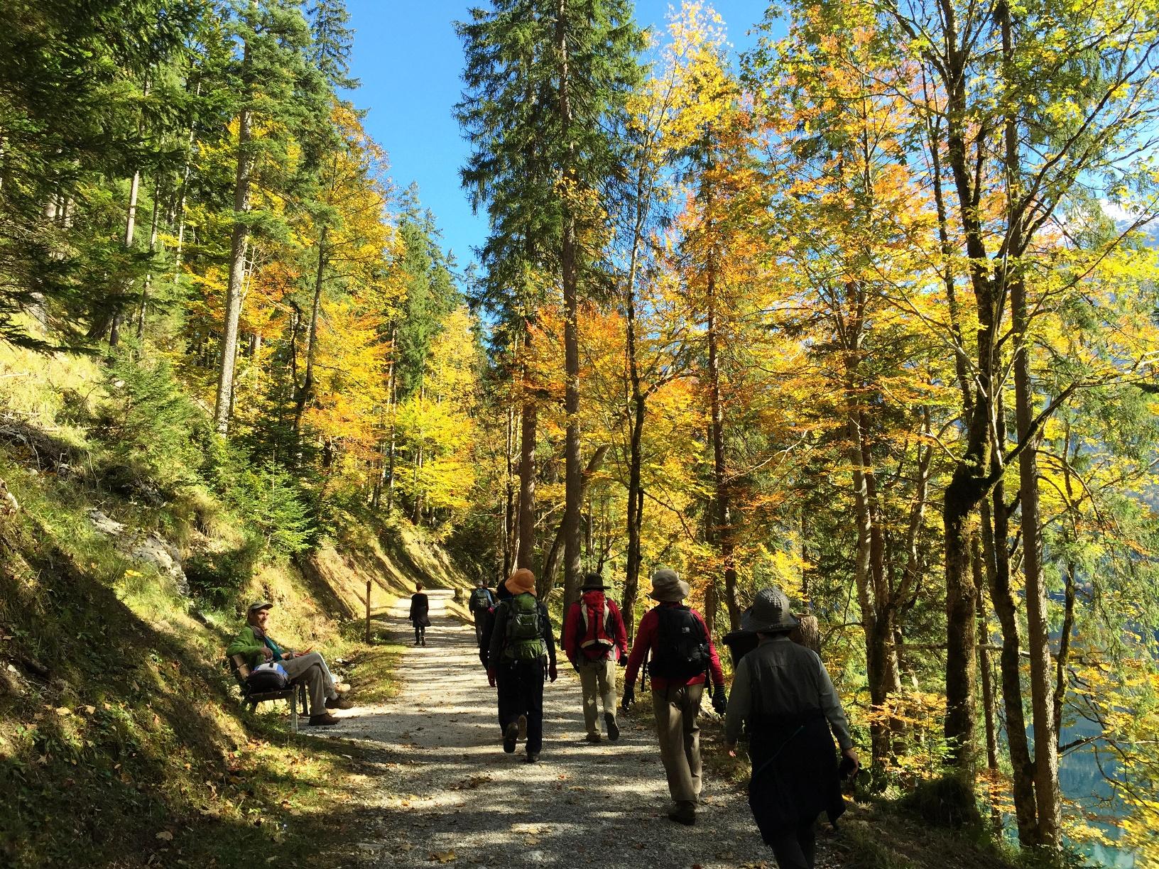 秋色に染まる森を歩く(4日目)